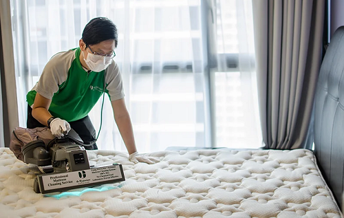 Top 10 Mattress Cleaning Company In Abbotsford